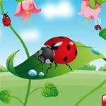 Hidden Bugs