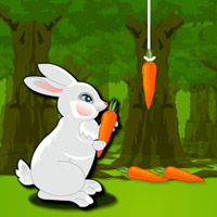 Lol Rabbit